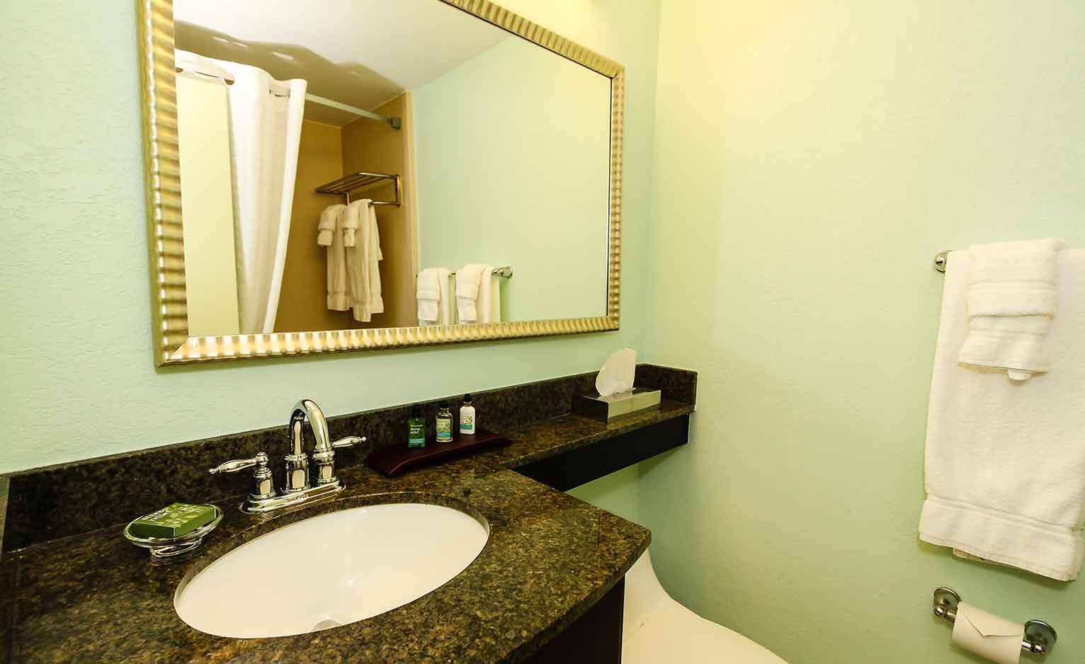 King-Standard bathroom view