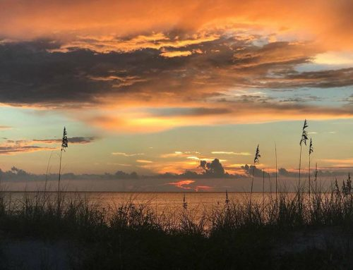 What makes Treasure Island, Florida so special?